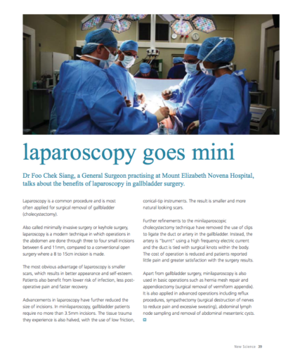 Mini-laparoscopy Mosaic